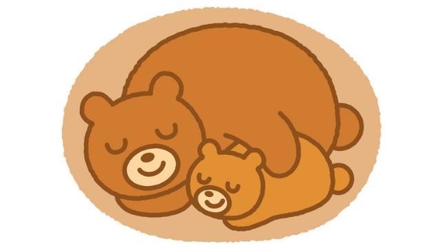 夢占い 熊