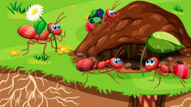 夢占い,蟻