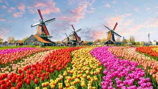 オランダ,観光
