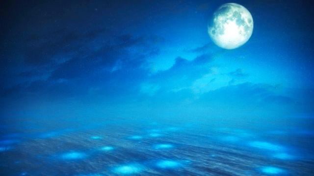 月,パワー