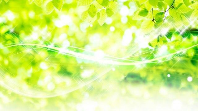 夢占い 緑