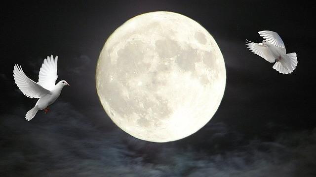 新月,願い事