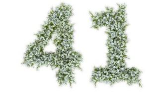 エンジェルナンバー41