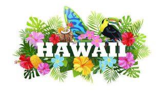 ハワイアン占い