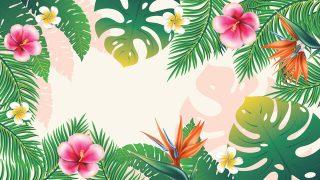 ハワイアン占い 2020 運勢