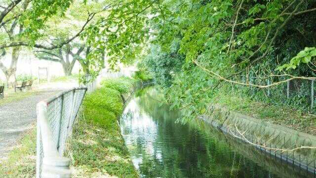 夢占い 用水路