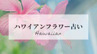 ハワイアンフラワー占い