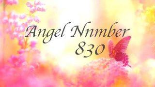 ナンバー 5000 エンジェル 5000のエンジェルナンバーの意味は『変化の時は正しく導かれている』です