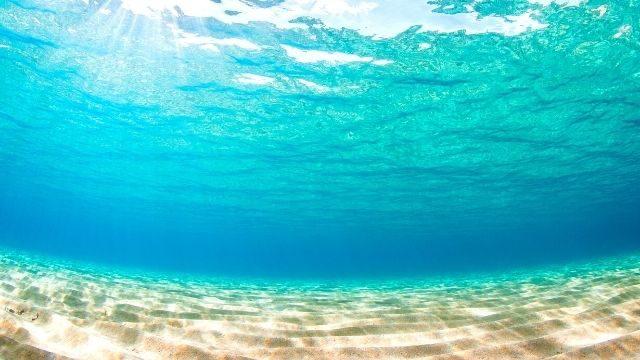 夢占い 海の中,(海底)