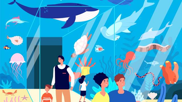 水族館,診断