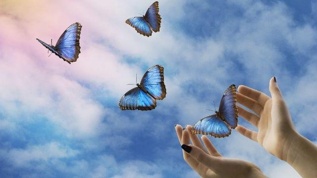 蝶,スピリチュアル
